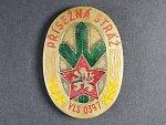 Odznak Přísežná stráž, vojenské lesy a statky, období 50. let, č. VLS 0397, mosazný silný plech, smalty, 69x50 mm, upínání na svislou jehlu, opravený úchyt