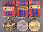 Pamětní medaile Za věrné služby v PO I. II. a III. stupně