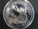 100 Shillings 2016 - 1 UNZ Ag - sloni, kvalita proof, Ag 999/1000, 31,11g etue